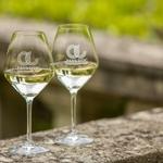 verre à vin pays d'oc 10 cl