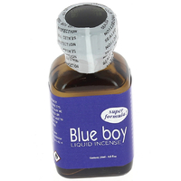 4300212000000-Poppers-Blue-Boy-24-ml