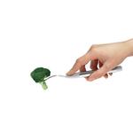 fourchette Brocoli 300DPI - Copie
