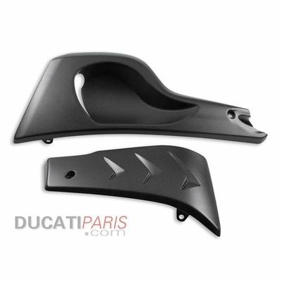 Support moteur carbone Ducati Diavel