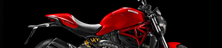 catégorie-moto-monster821