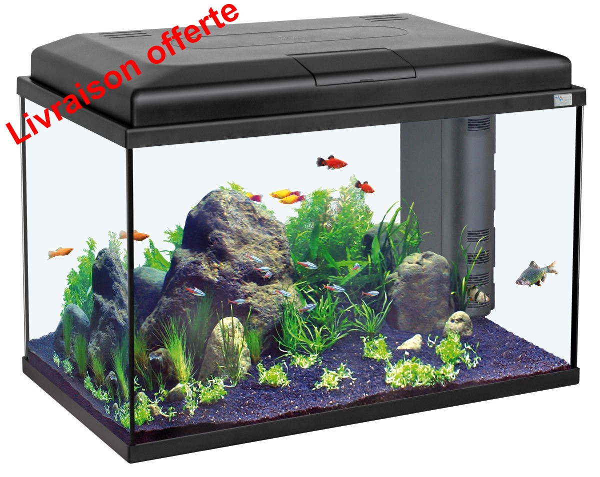 aqua start 55 noir meubles et aquariums eau douce aquariums quip s eau chaude. Black Bedroom Furniture Sets. Home Design Ideas