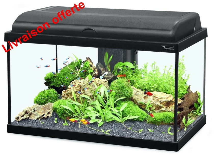 fabriquer re led aquarium eau douce 28 images maxspect re led glaive 40 watts pour aquarium. Black Bedroom Furniture Sets. Home Design Ideas