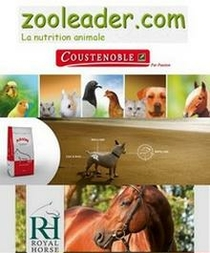 Photo lien zooleader
