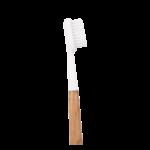 Brosse à dents en bois de chêne - Tête blanche - Poils médium - Caliquo