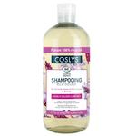 Shampoing Éclat couleur - Cheveux colorés et méchés - 500ml