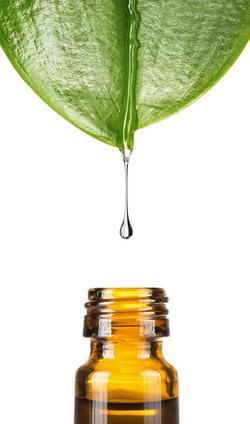 Complexes d'huiles essentielles bio Océante