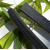 Charbon Takesumi marque Zero - Stick 1,5 litre