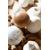 Brosse à champignons collection Zero