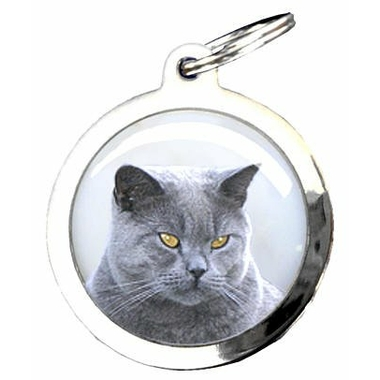 41char-chat-chartreux-0921374001387735900