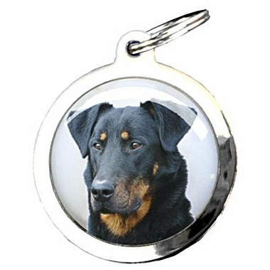 41bea-beauceron-0047133001386948988-0683375001386951474