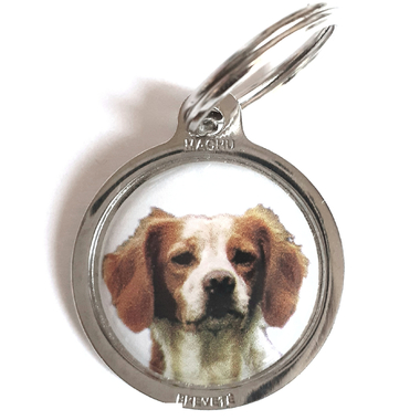 medaille_chien_epagneul_breton