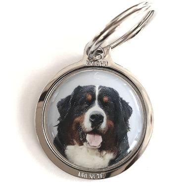 medaille_chien_bouvier_bernois