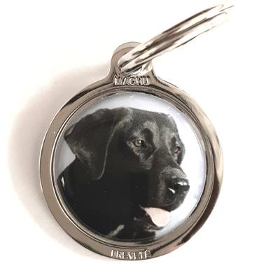medaille_chien_labrador_noir