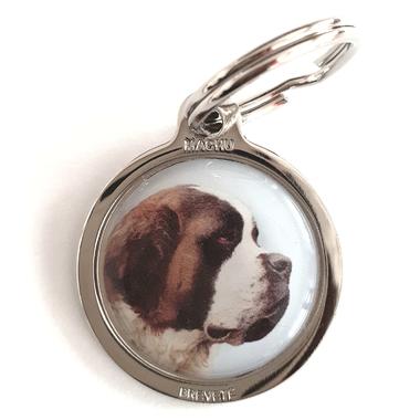 medaille_chien_saint_bernard