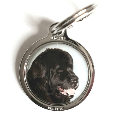 medaille_chien_terre_neuve