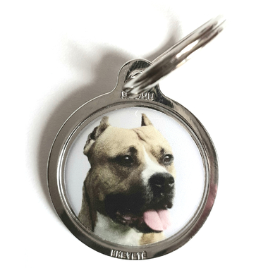 medaille_chien_american_stafforshire_terrier