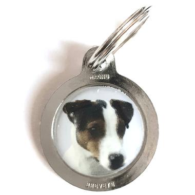 medaille_chien_jack_russel