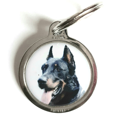 medaille_chien_beauceron5