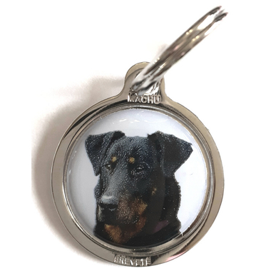 medaille-chien-beauceron2