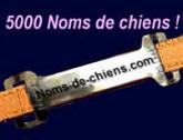 noms_de_chiens