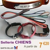 sellerie_chien