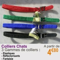 colliers_chat