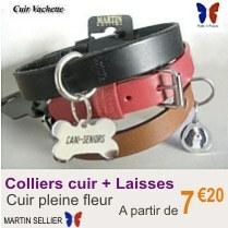 collier_chien