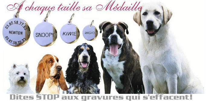 medaille_chien_traditionnelle