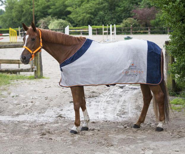 Chemise polaire EQUITHÈME Equestrian Authentic