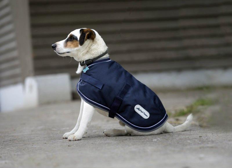 Couverture EQUI-THÈME 600D pour chien
