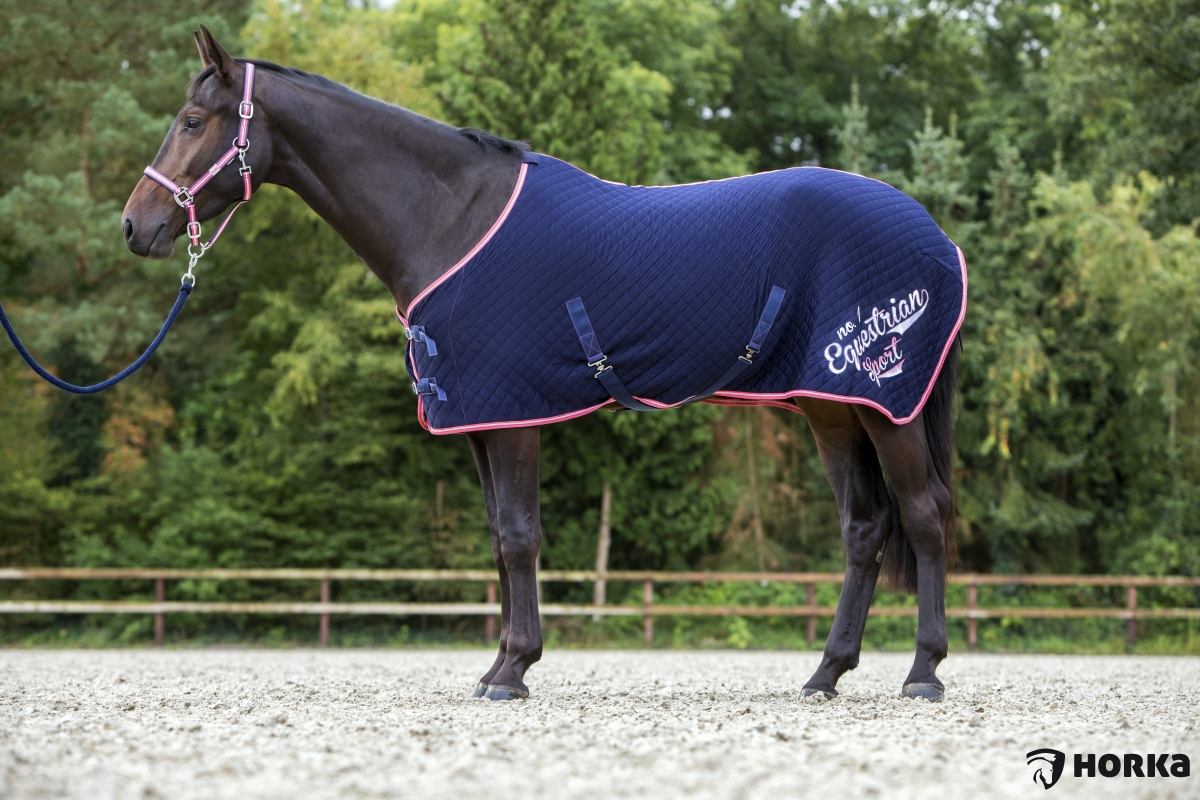 Chemise matelassée Equestrian sport