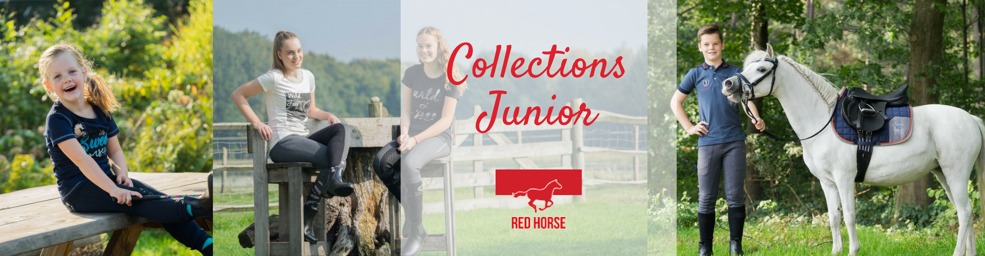 Collection cavalier junior Red horse