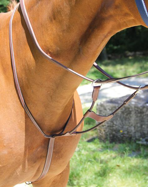 Martingale à anneaux élastique Brio Treadstone