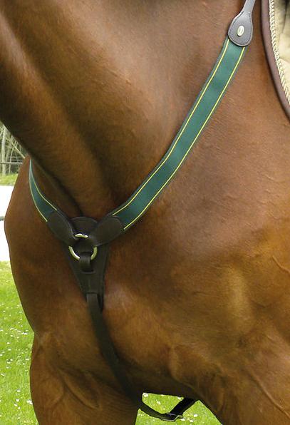 Collier de chasse élastique Protanner