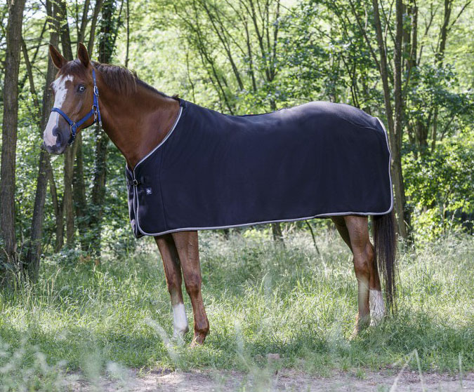 Chemise polaire RIDING WORLDLes
