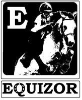 EQUIZOR