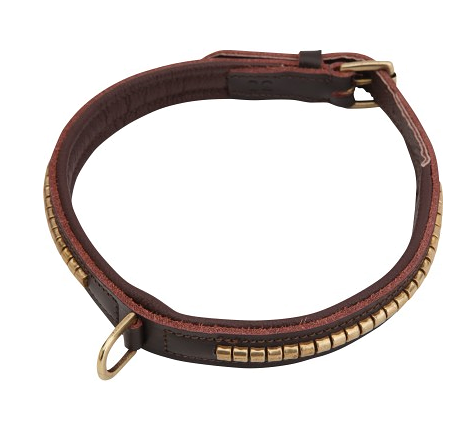 collier chien cuir equitation