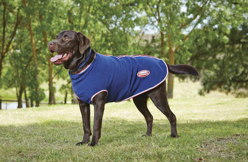 Couverture chien WEATHERBEETA Fleece Zip