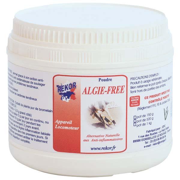 Algie free Rekor