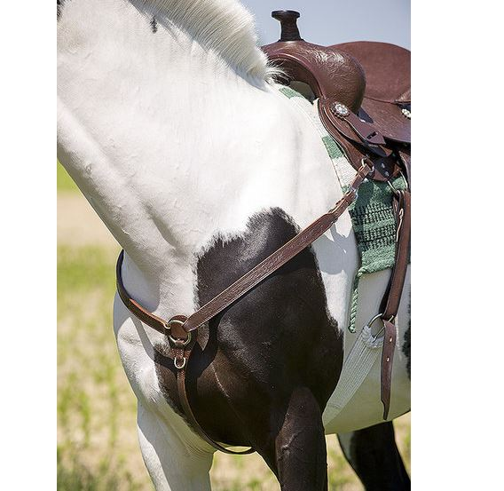 Collier de chasse western RANDOL\'S Topeka