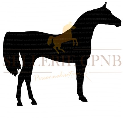 Sticker Cheval Arabe de profil