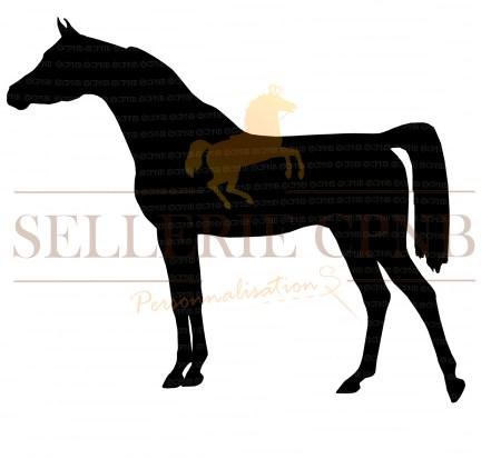 Sticker Cheval arabe de show