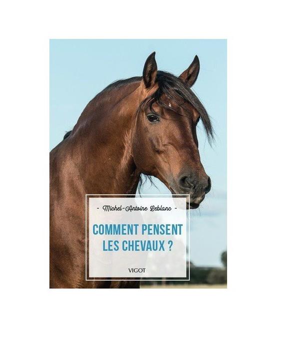 Comment pensent les chevaux ?