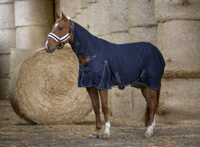 Chemise EQUITHÈME Cool Dry Combo