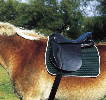 cheval de trait selle