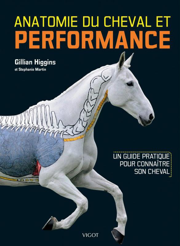 Anatomie du cheval et performance