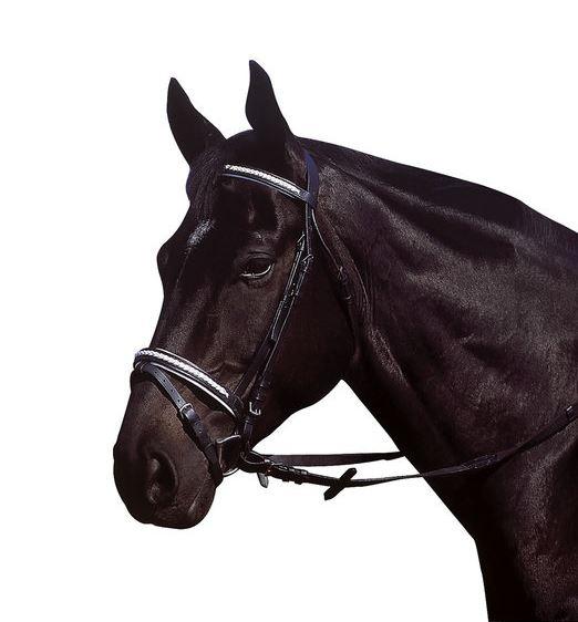 Bridon EXCELSIOR Cuir noir tressé blanc