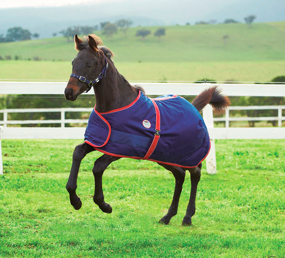 Couverture WEATHERBEETA Foal 1200 D Standard 220 g