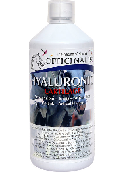 Aliment complémentaire OFFICINALIS Hyaluronic Cartilage